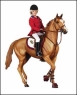 English Riding Accessory Set